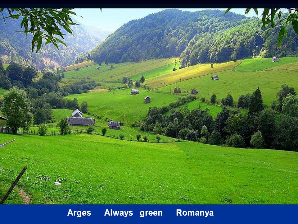 Arges Always green Romanya