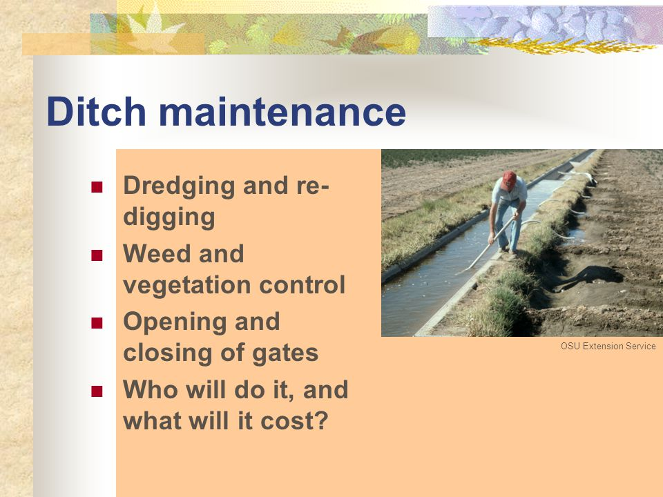 Ditch maintenance Dredging and re- digging Weed and vegetation control Opening and closing of gates Who will do it, and what will it cost.