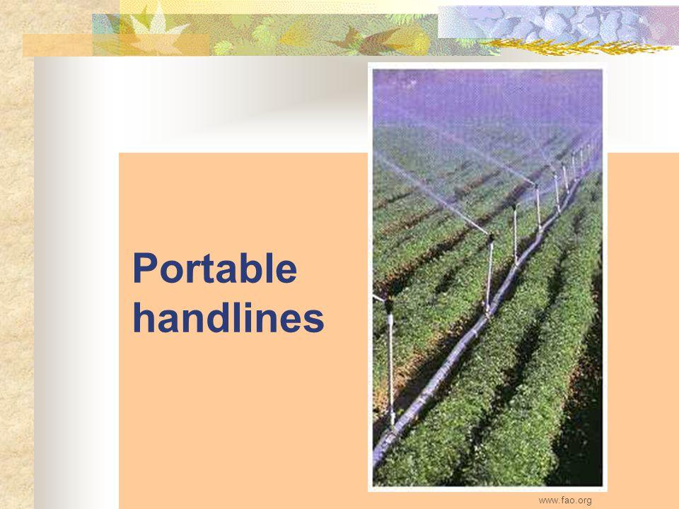 Portable handlines www.fao.org