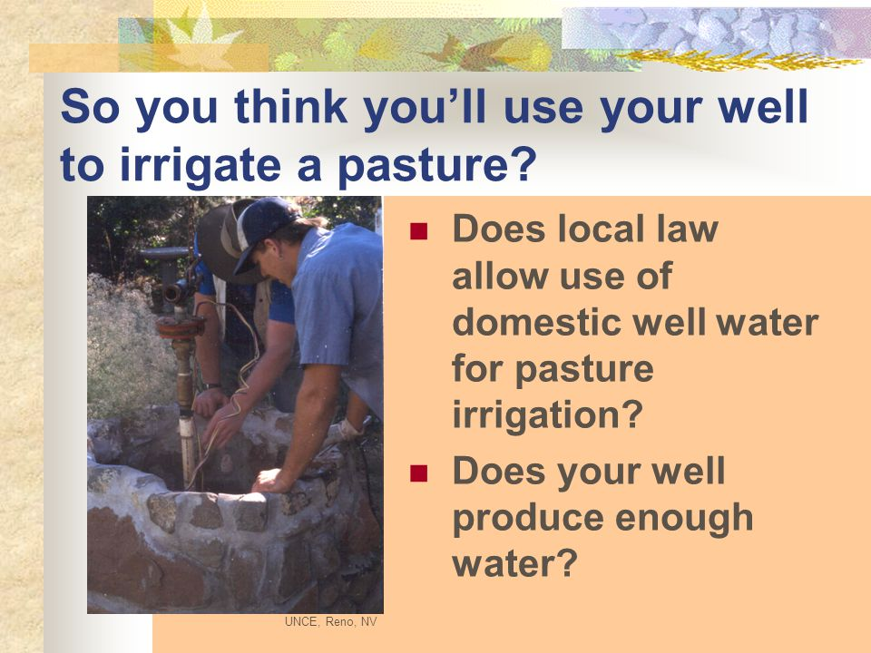 So you think you'll use your well to irrigate a pasture.