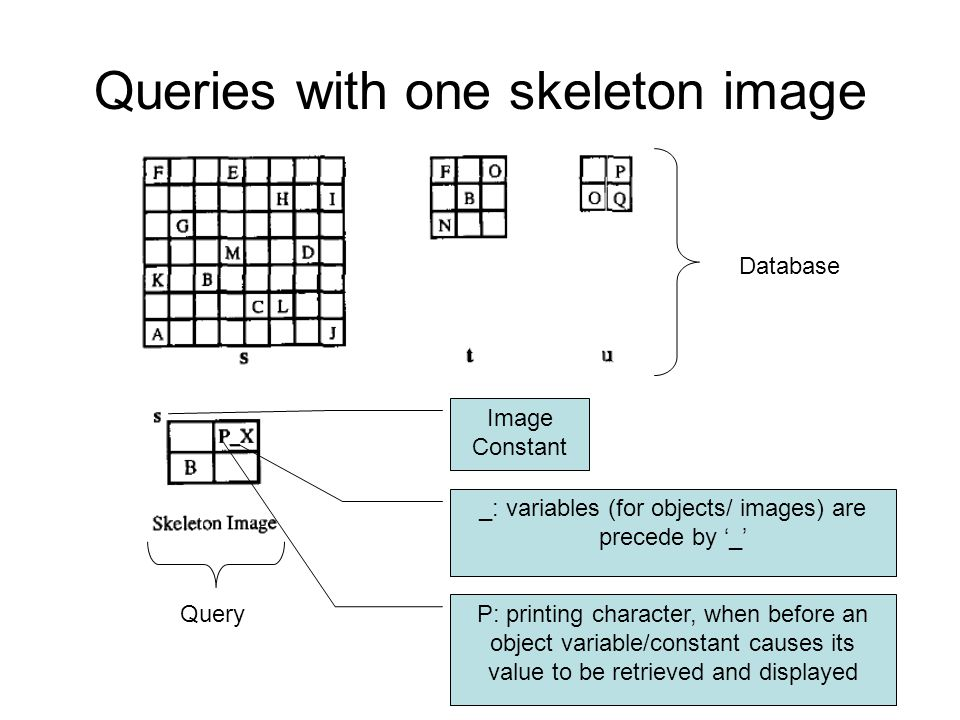 Query Queries with one skeleton image _: variables (for objects/ images) are precede by '_' P: printing character, when before an object variable/constant causes its value to be retrieved and displayed Database Image Constant