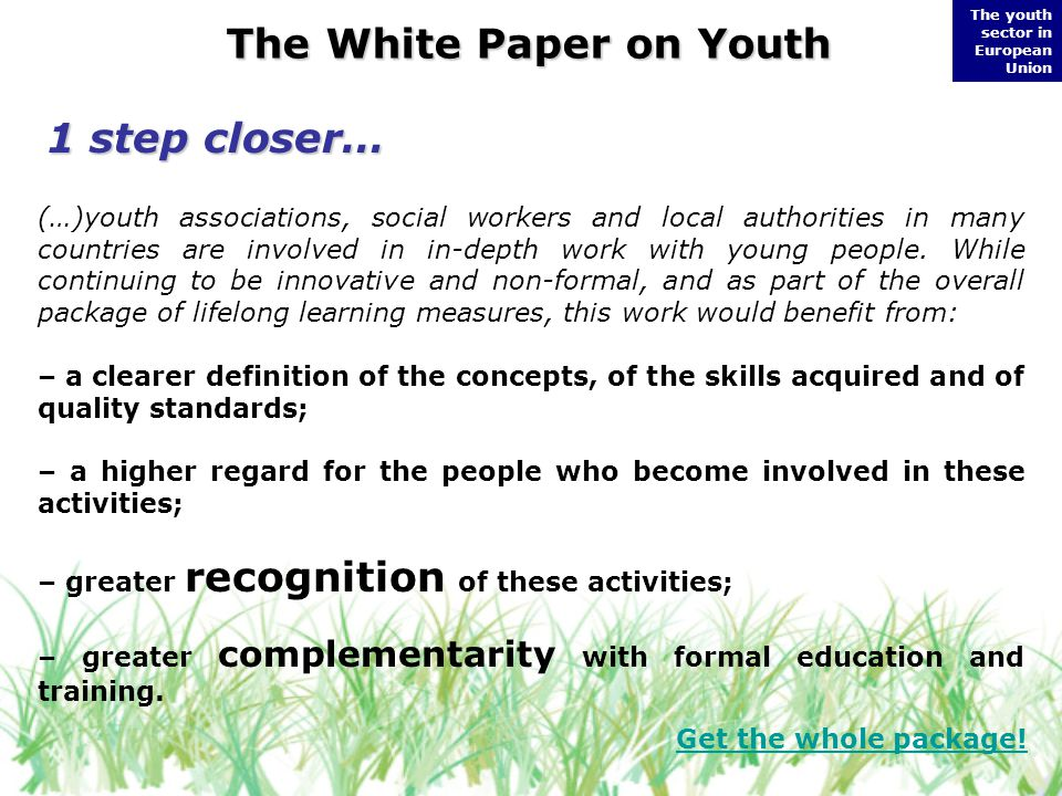 The youth sector in European Union The White Paper on Youth (…)youth associations, social workers and local authorities in many countries are involved in in-depth work with young people.