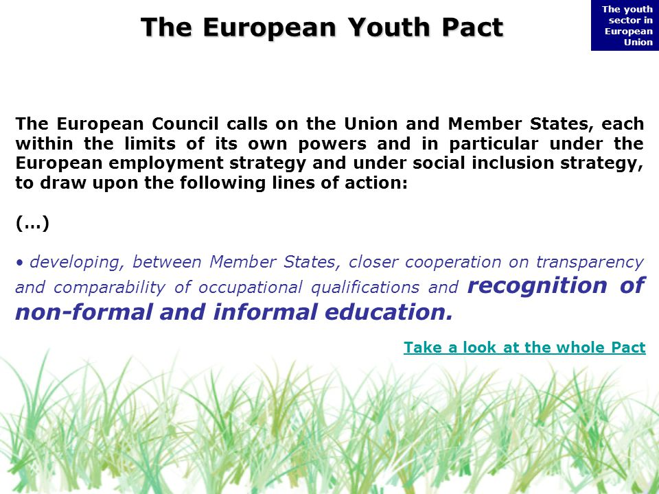 The European Youth Pact The youth sector in European Union The European Council calls on the Union and Member States, each within the limits of its own powers and in particular under the European employment strategy and under social inclusion strategy, to draw upon the following lines of action: (…) developing, between Member States, closer cooperation on transparency and comparability of occupational qualifications and recognition of non-formal and informal education.