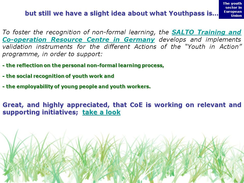 but still we have a slight idea about what Youthpass is… To foster the recognition of non-formal learning, the SALTO Training and Co-operation Resource Centre in Germany develops and implements validation instruments for the different Actions of the Youth in Action programme, in order to support:SALTO Training and Co-operation Resource Centre in Germany - the reflection on the personal non-formal learning process, - the social recognition of youth work and - the employability of young people and youth workers.