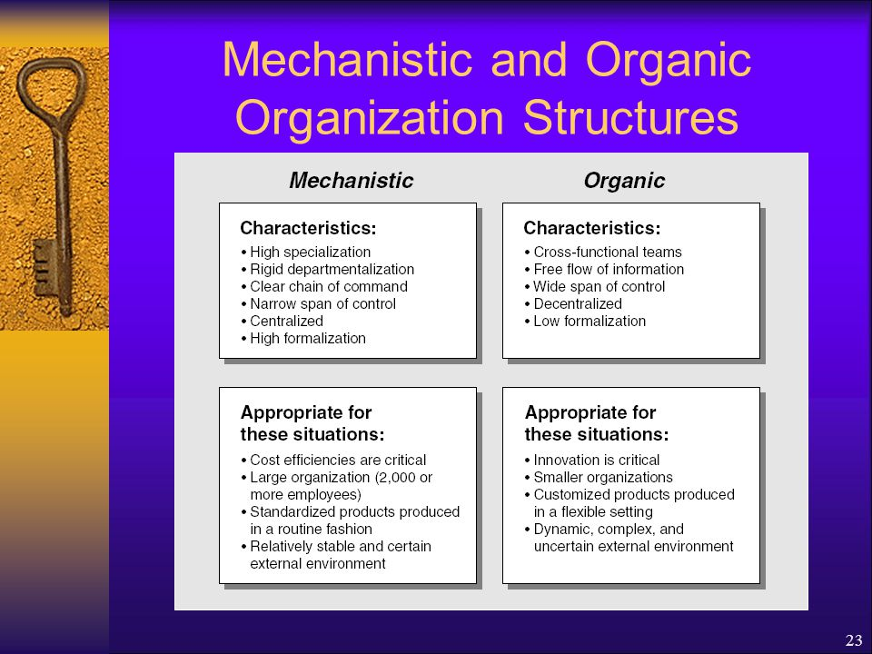23 Mechanistic and Organic Organization Structures