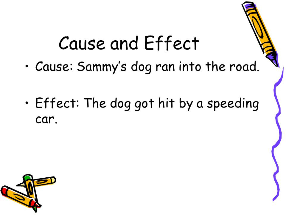 Cause and Effect Cause: Sammy's dog ran into the road. Effect: The dog got hit by a speeding car.