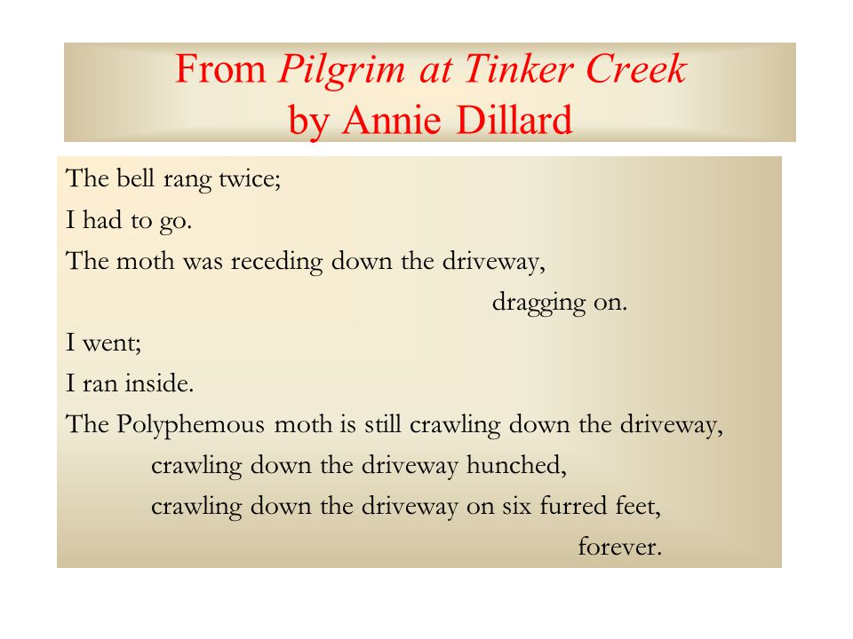 From Pilgrim at Tinker Creek by Annie Dillard The bell rang twice; I had to go.