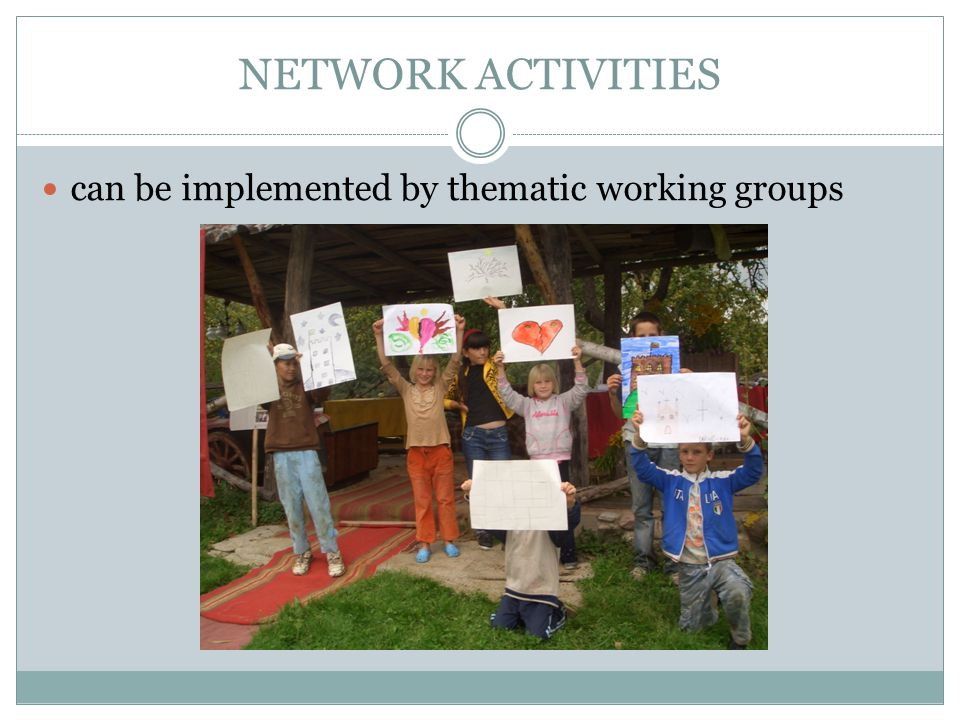 NETWORK ACTIVITIES can be implemented by thematic working groups