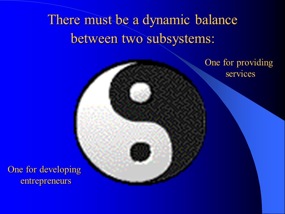 There must be a dynamic balance between two subsystems: One for developing entrepreneurs One for providing services