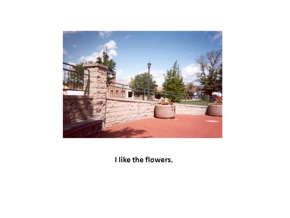 I like the flowers.