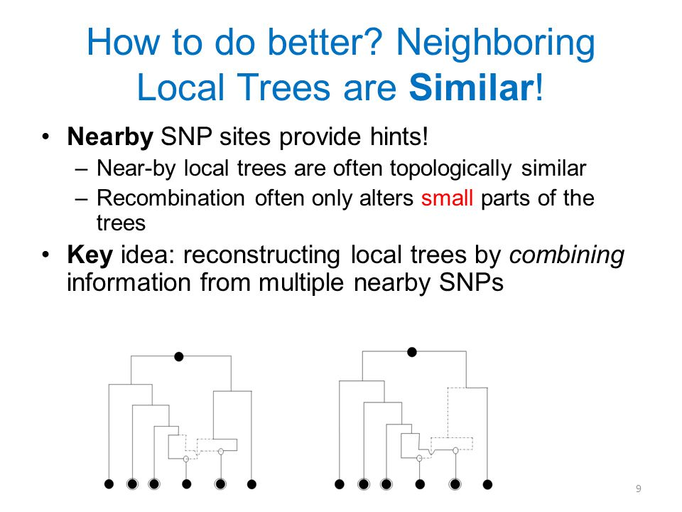 How to do better. Neighboring Local Trees are Similar.