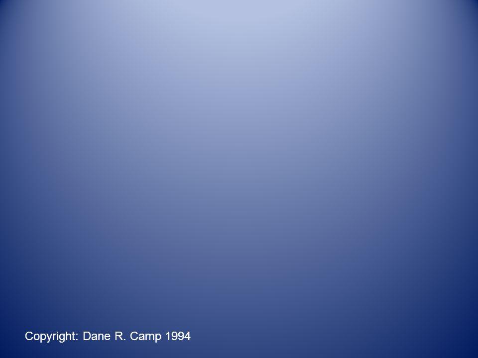 Copyright: Dane R. Camp 1994