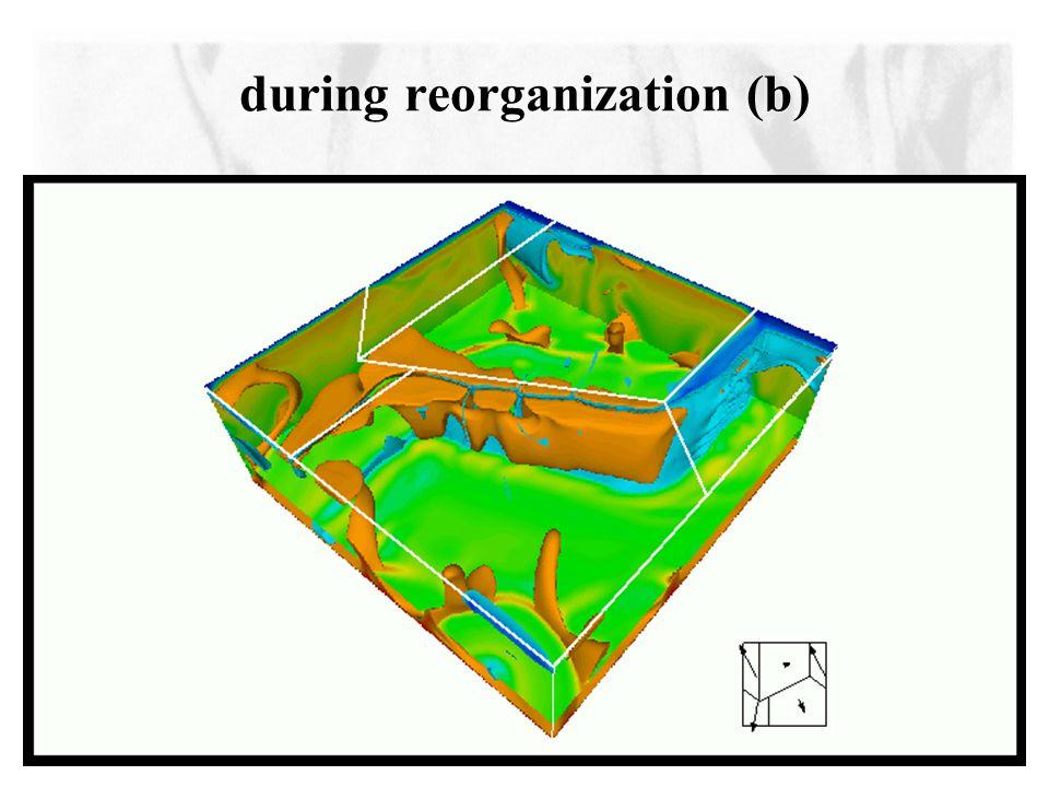 during reorganization (b)