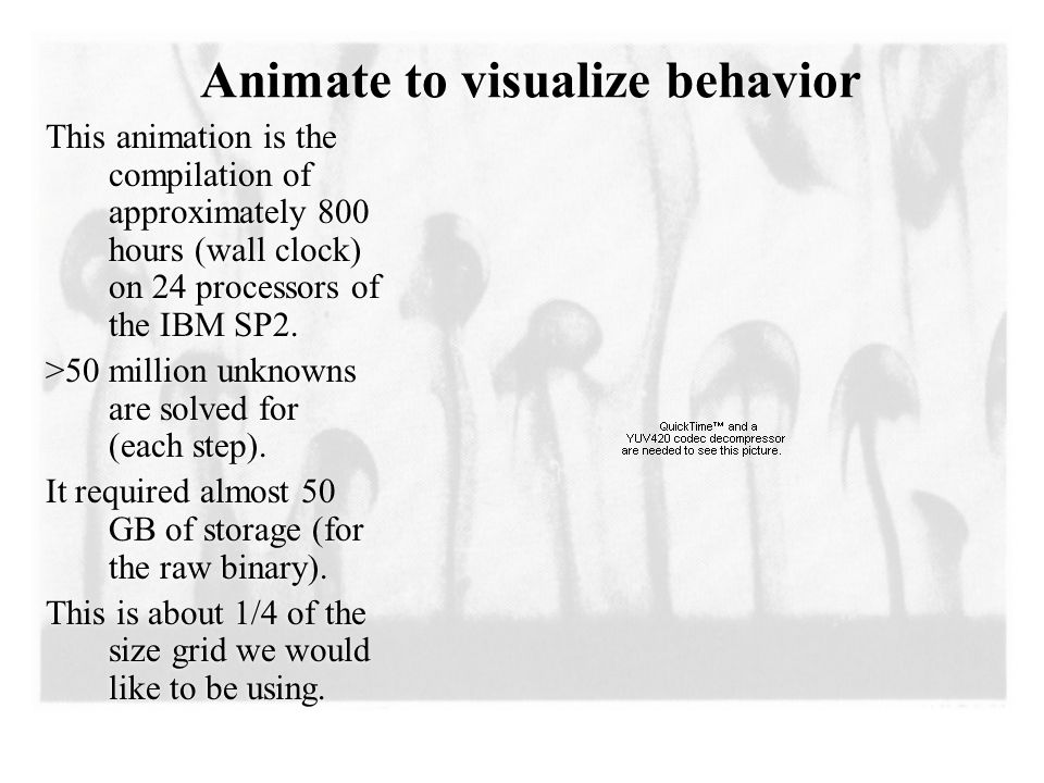 Animate to visualize behavior This animation is the compilation of approximately 800 hours (wall clock) on 24 processors of the IBM SP2.
