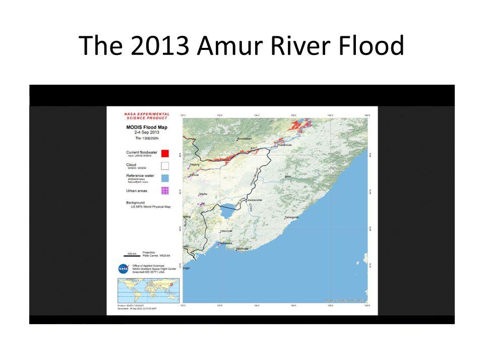 The 2013 Amur River Flood