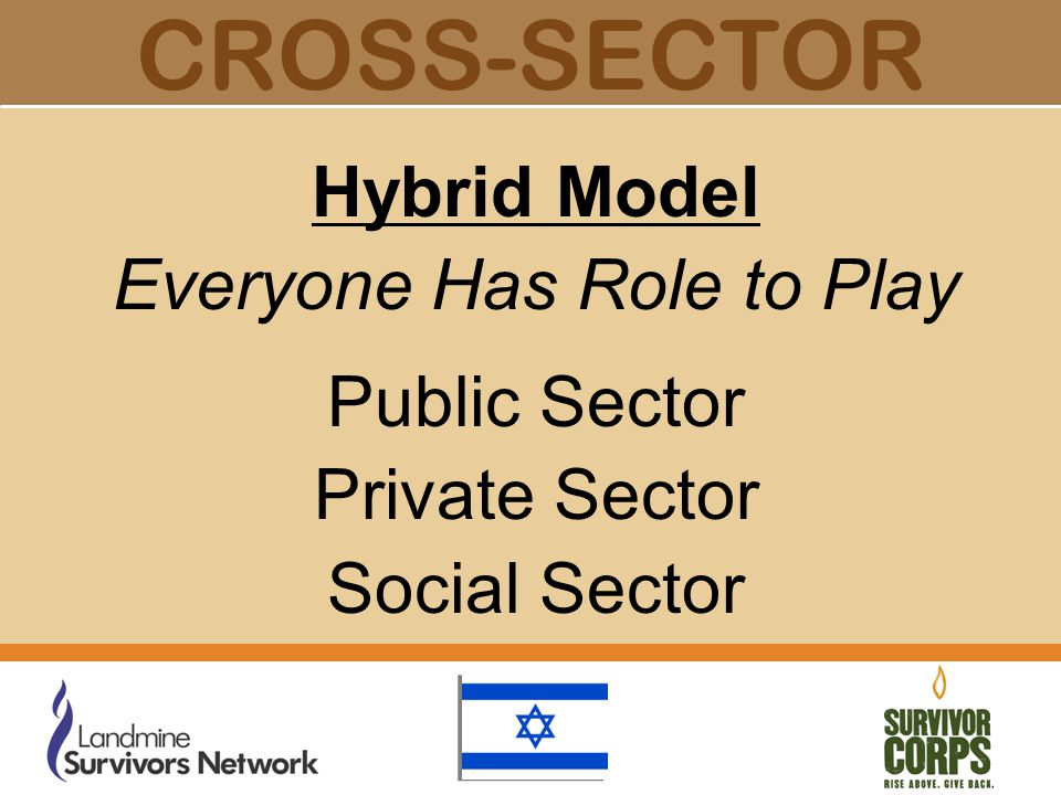 CROSS-SECTOR Hybrid Model Everyone Has Role to Play Public Sector Private Sector Social Sector