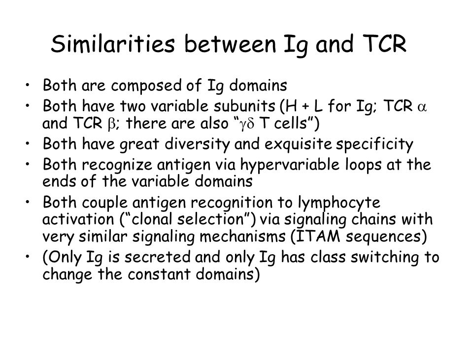 """Similarities between Ig and TCR Both are composed of Ig domains Both have two variable subunits (H + L for Ig; TCR  and TCR  ; there are also """"  T"""