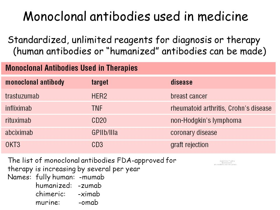 """Monoclonal antibodies used in medicine Standardized, unlimited reagents for diagnosis or therapy (human antibodies or """"humanized"""" antibodies can be ma"""