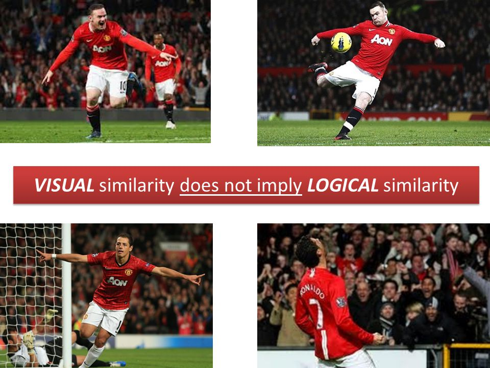 6 VISUAL similarity does not imply LOGICAL similarity