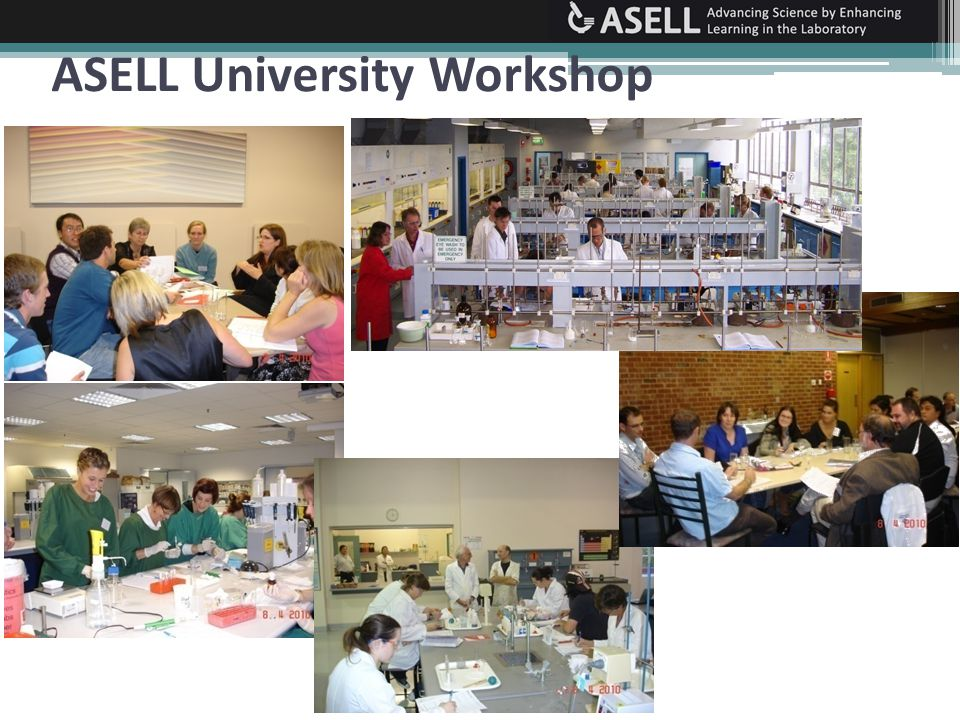 ASELL Schools workshop