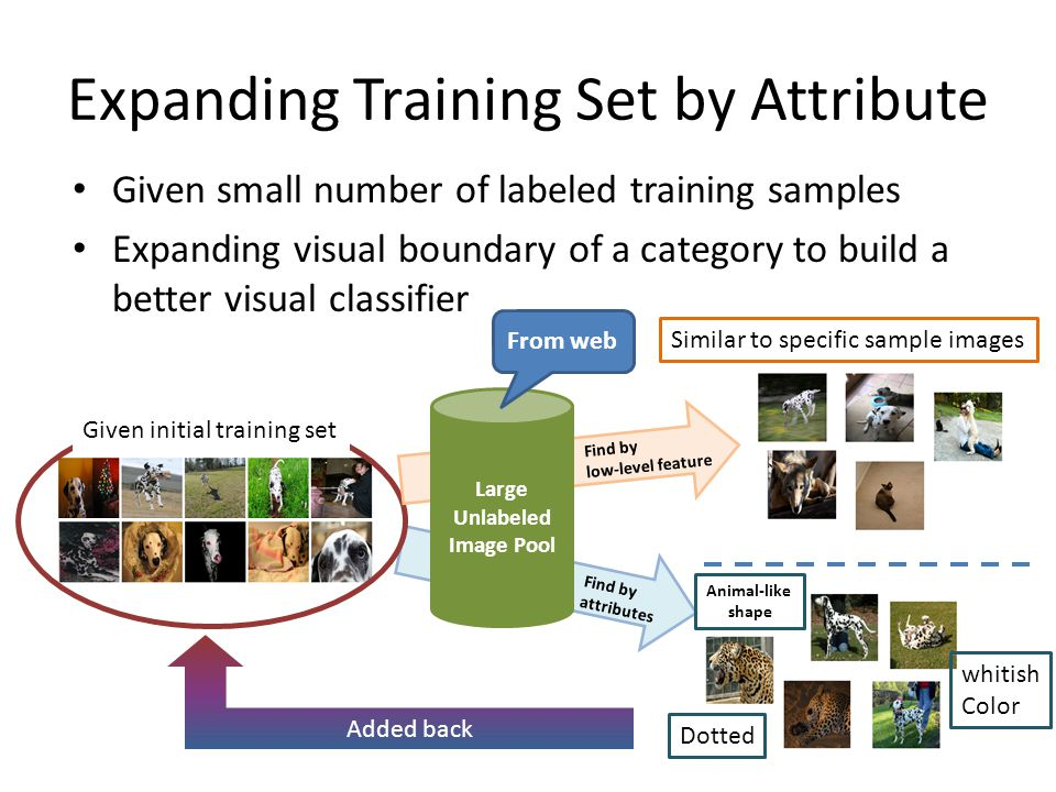 Expanding Training Set by Attribute Given small number of labeled training samples Expanding visual boundary of a category to build a better visual classifier Given initial training set Large Unlabeled Image Pool Find by low-level feature Find by attributes Similar to specific sample images Dotted whitish Color Animal-like shape Added back From web