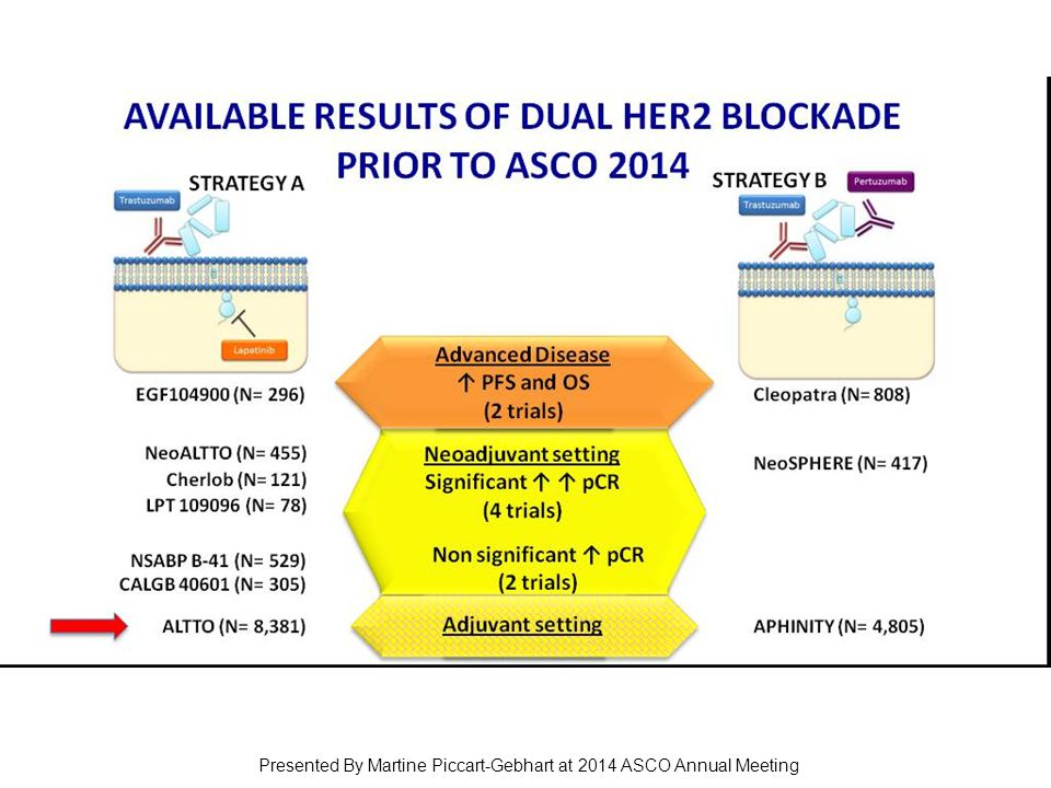 Slide 3 Presented By Martine Piccart-Gebhart at 2014 ASCO Annual Meeting