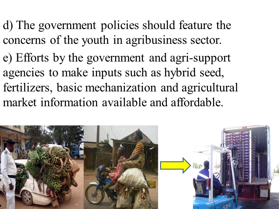 d) The government policies should feature the concerns of the youth in agribusiness sector. e) Efforts by the government and agri-support agencies to
