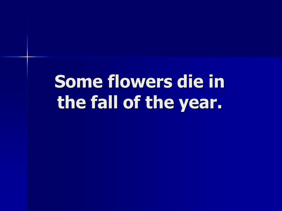 Some flowers die in the fall of the year.