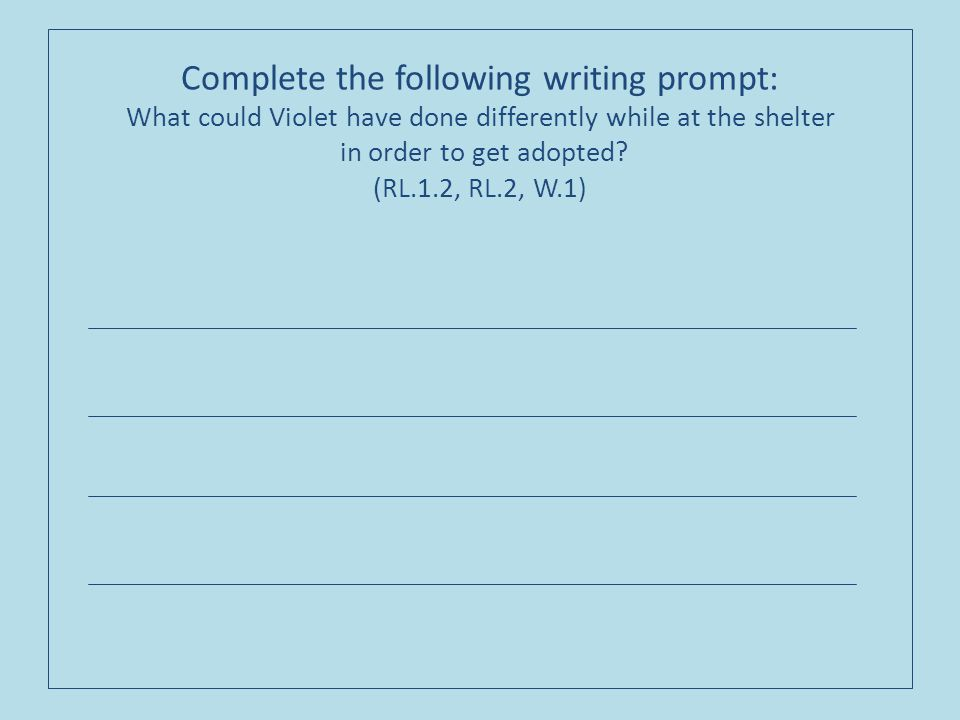 Complete the following writing prompt: What could Violet have done differently while at the shelter in order to get adopted.