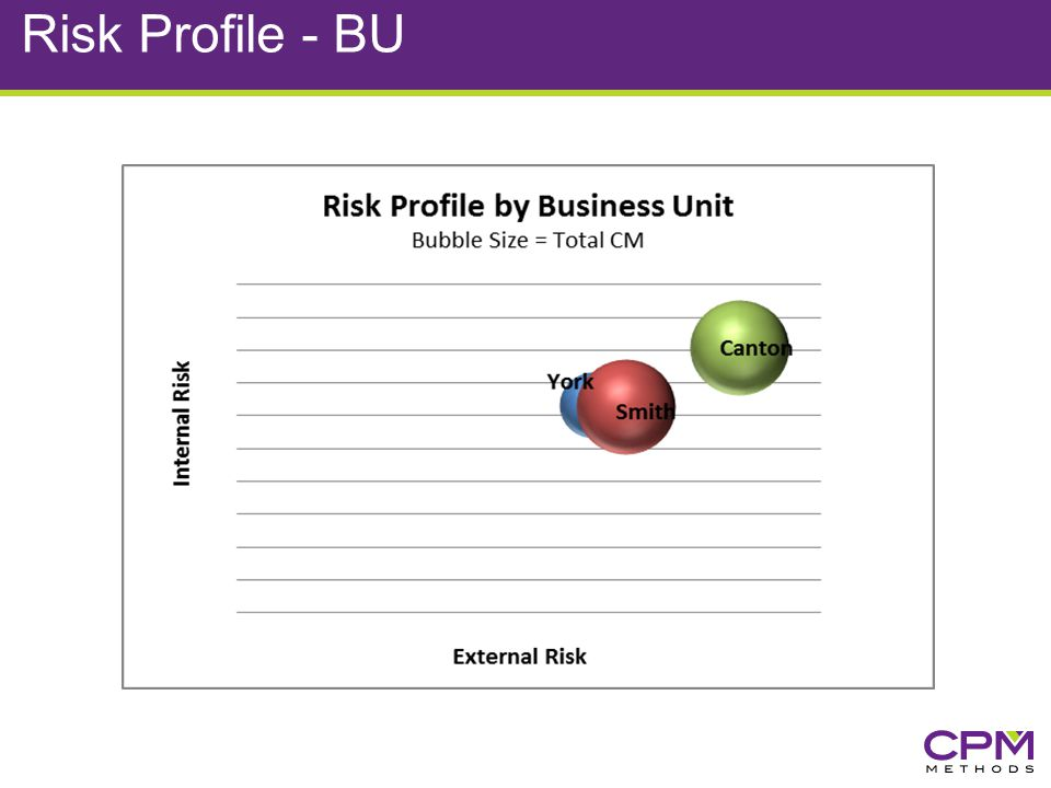 Risk Profile - BU