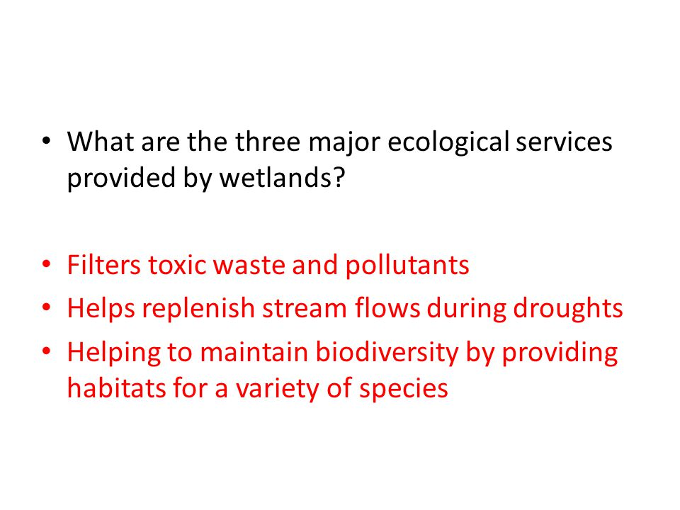 What are the three major ecological services provided by wetlands? Filters toxic waste and pollutants Helps replenish stream flows during droughts Hel