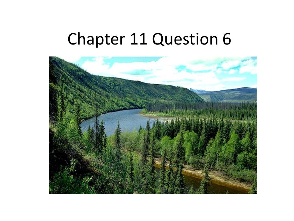 Chapter 11 Question 6