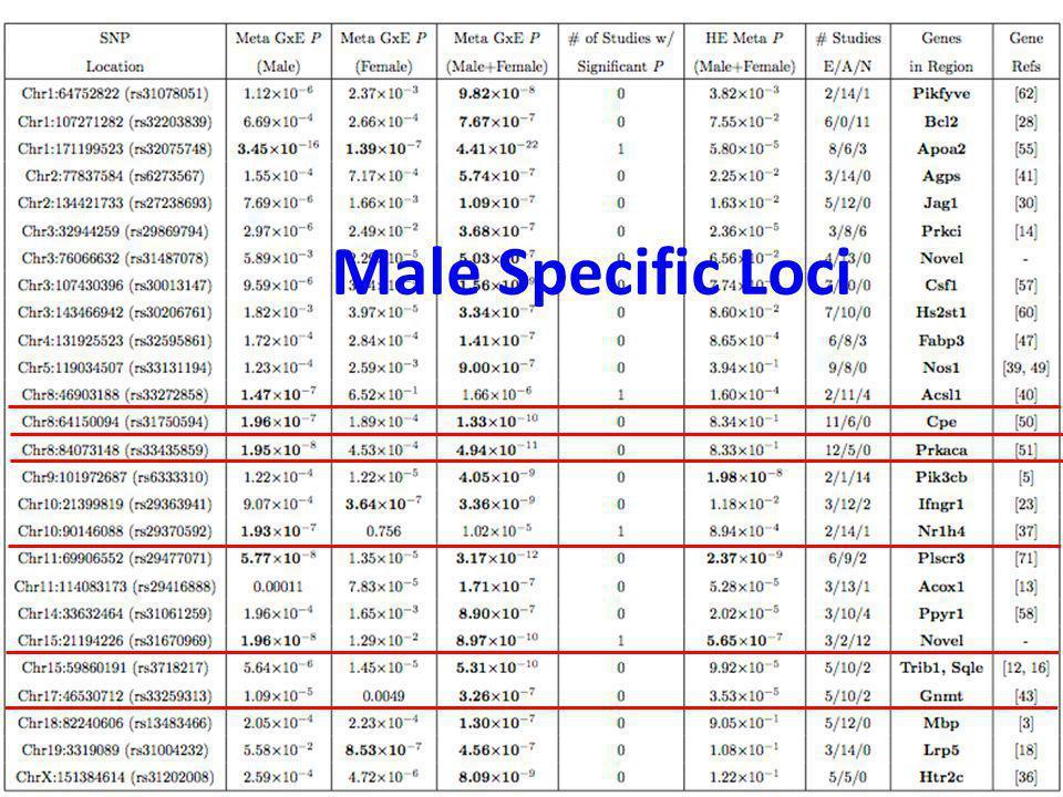 Male Specific Loci