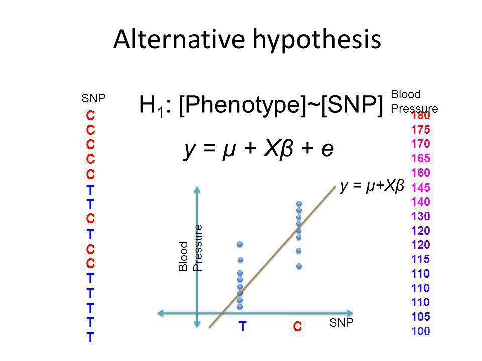 Alternative hypothesis C C C C C T T C T C C T T T T T SNP H 1 : [Phenotype]~[SNP] SNP T 180 175 170 165 160 145 140 130 120 115 110 105 100 C Blood Pressure y = μ + Xβ + e y = μ+Xβ 3 Blood Pressure