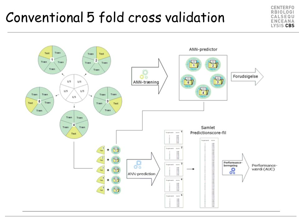 Conventional 5 fold cross validation