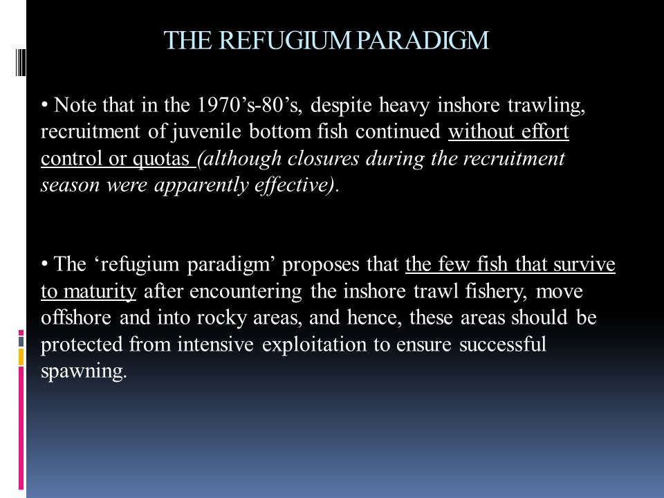 THE REFUGIUM PARADIGM Note that in the 1970's-80's, despite heavy inshore trawling, recruitment of juvenile bottom fish continued without effort contr