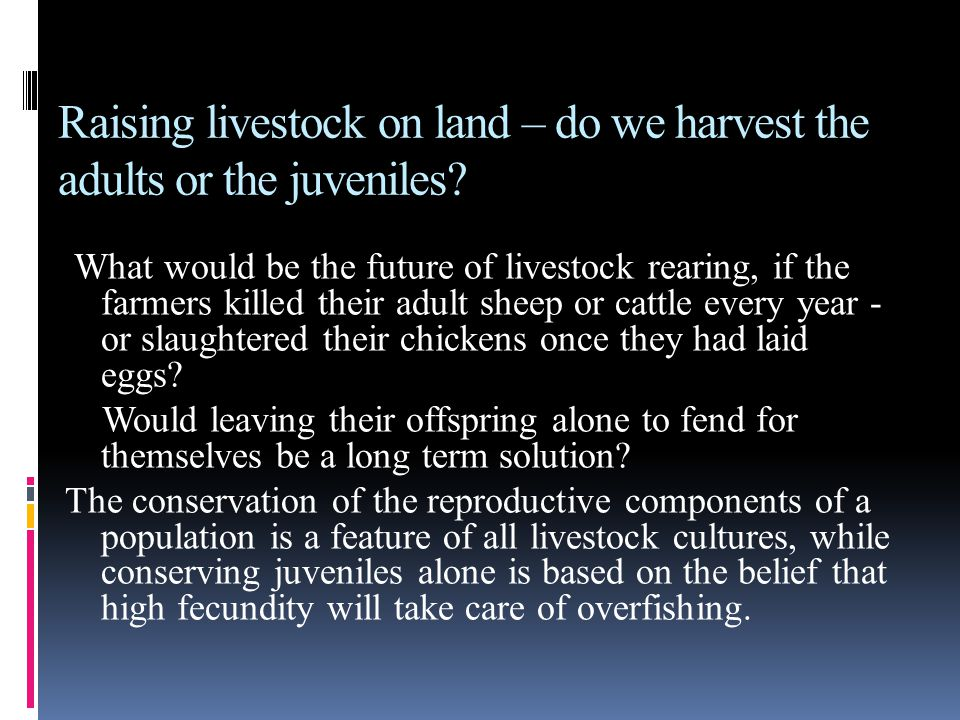 Raising livestock on land – do we harvest the adults or the juveniles? What would be the future of livestock rearing, if the farmers killed their adul