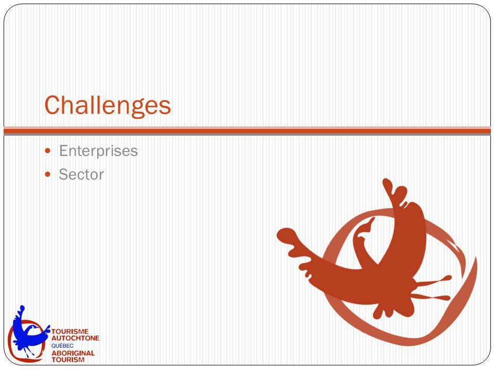 Challenges Enterprises Sector