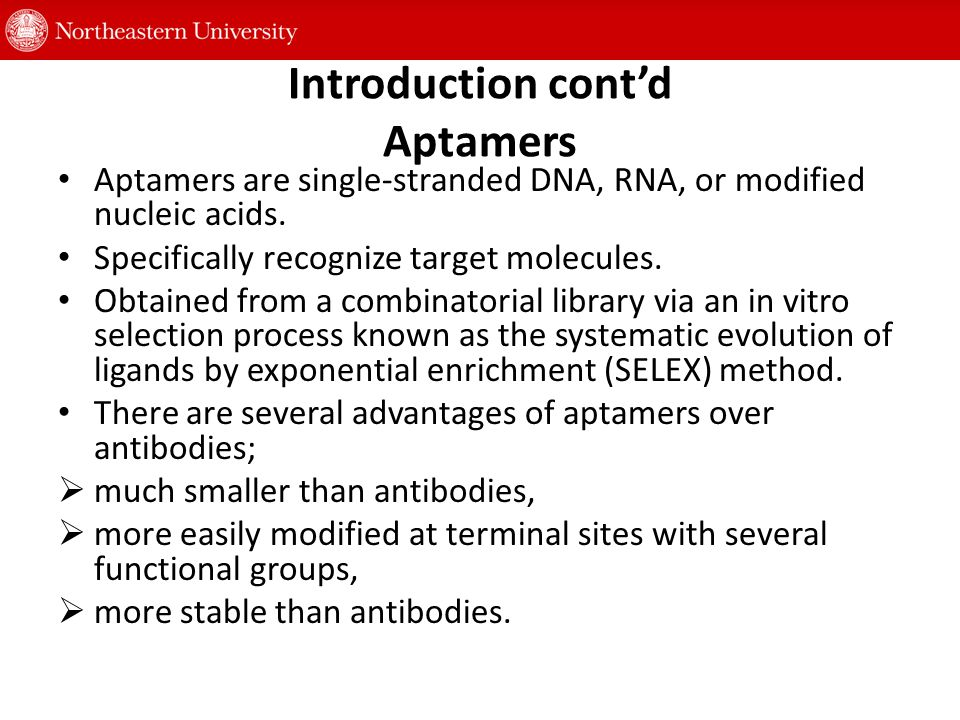 Introduction cont'd Aptamers Aptamers are single-stranded DNA, RNA, or modified nucleic acids.