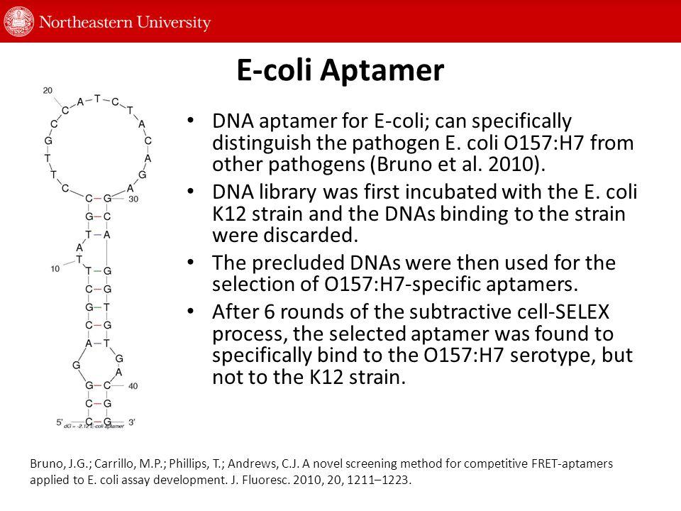 Biosensor Systems for E-coli Detection Detection method Recognition element/target Detection range Detection time Enrichment or DNA-protein extraction Regeneration Ref.