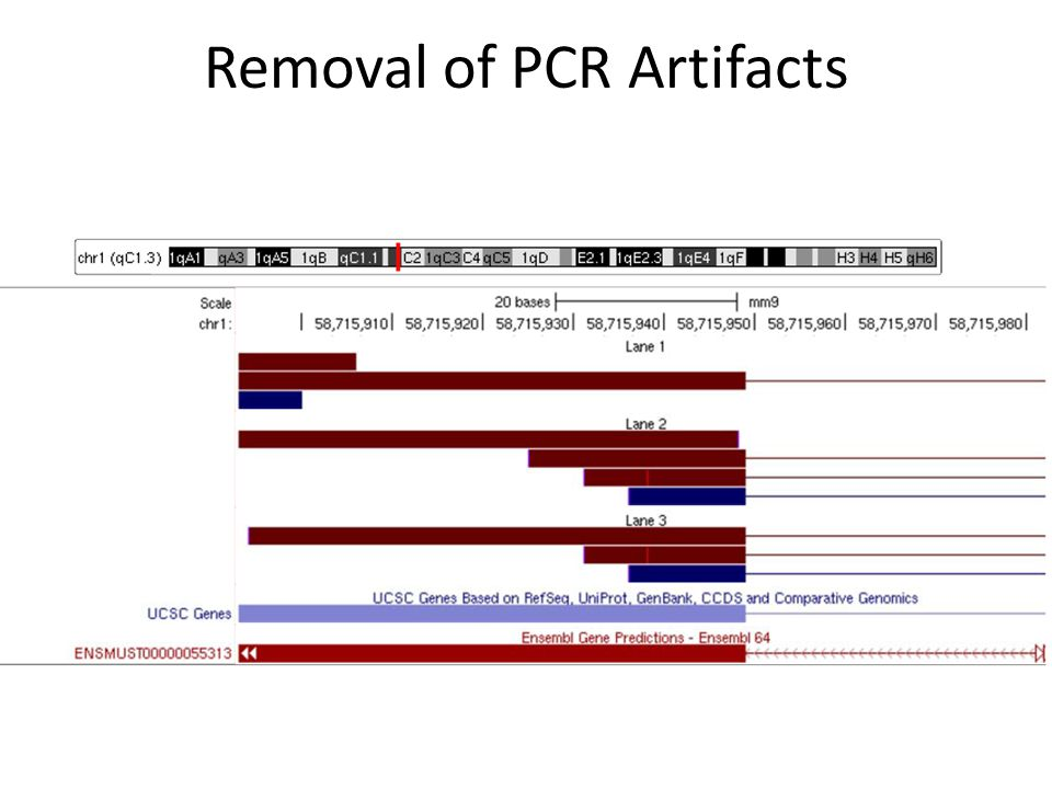 Removal of PCR Artifacts