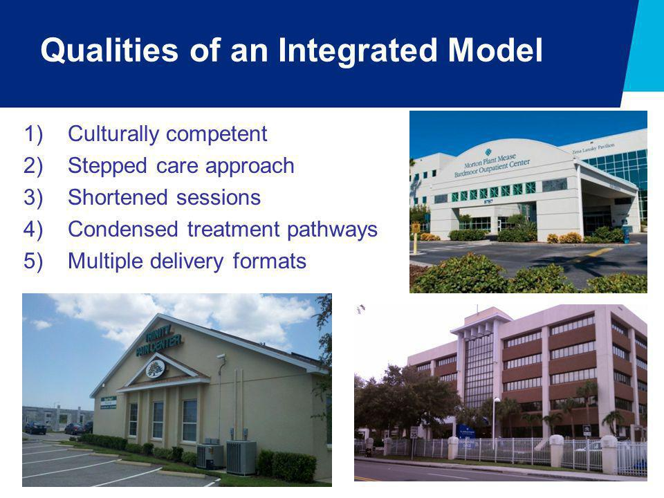 Qualities of an Integrated Model 1)Culturally competent 2)Stepped care approach 3)Shortened sessions 4)Condensed treatment pathways 5)Multiple deliver