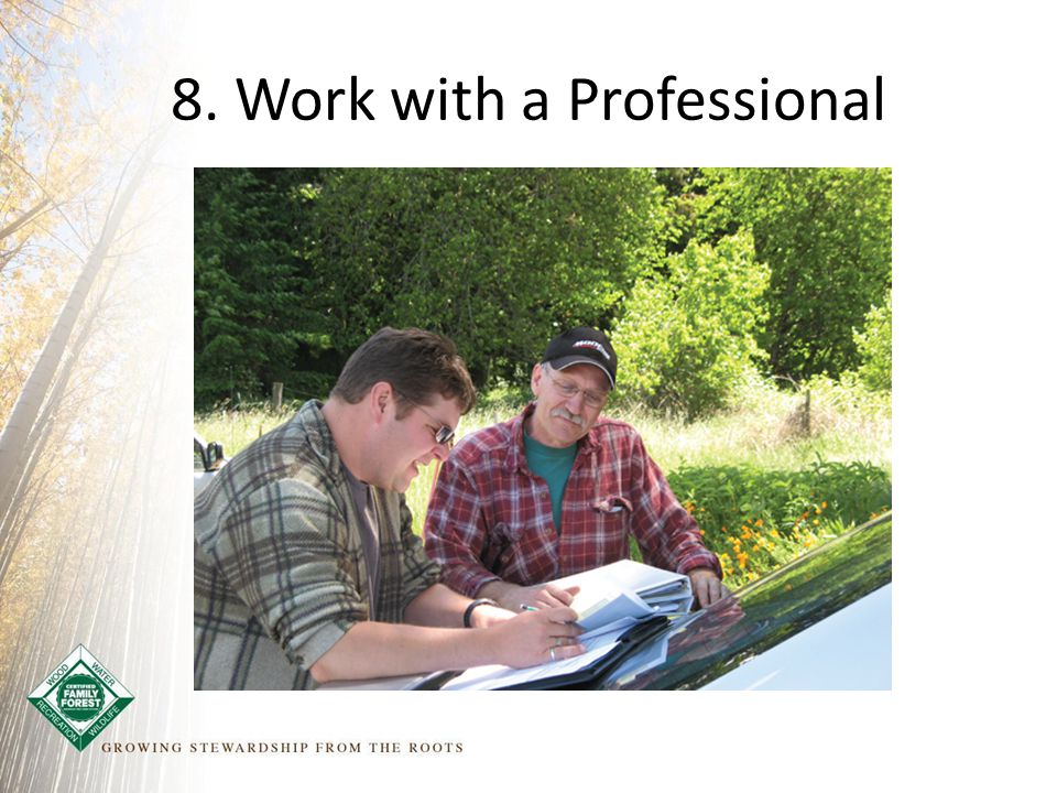 8. Work with a Professional