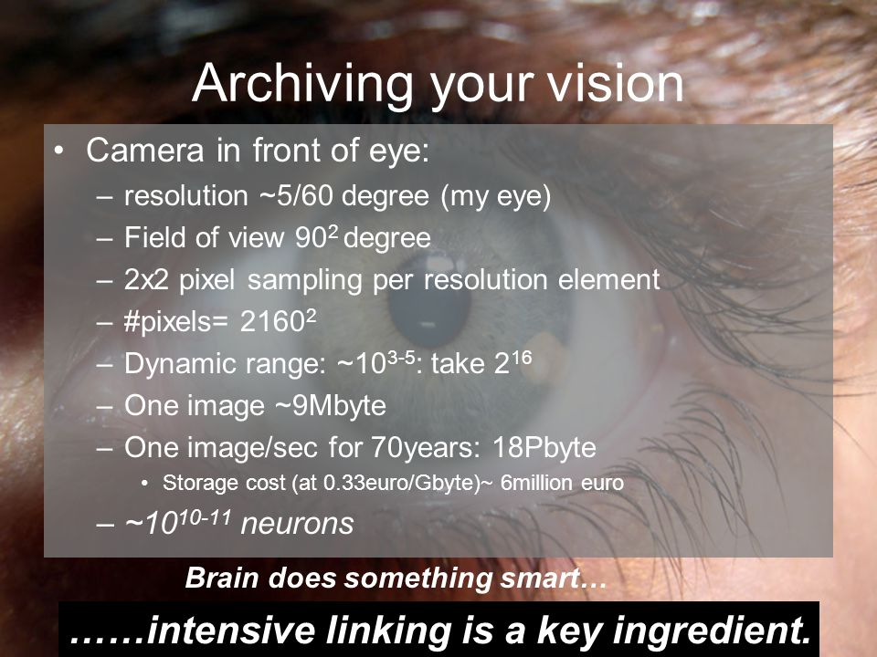 Archiving your vision Camera in front of eye: –resolution ~5/60 degree (my eye) –Field of view 90 2 degree –2x2 pixel sampling per resolution element –#pixels= 2160 2 –Dynamic range: ~10 3-5 : take 2 16 –One image ~9Mbyte –One image/sec for 70years: 18Pbyte Storage cost (at 0.33euro/Gbyte)~ 6million euro –~10 10-11 neurons Brain does something smart… ……intensive linking is a key ingredient.
