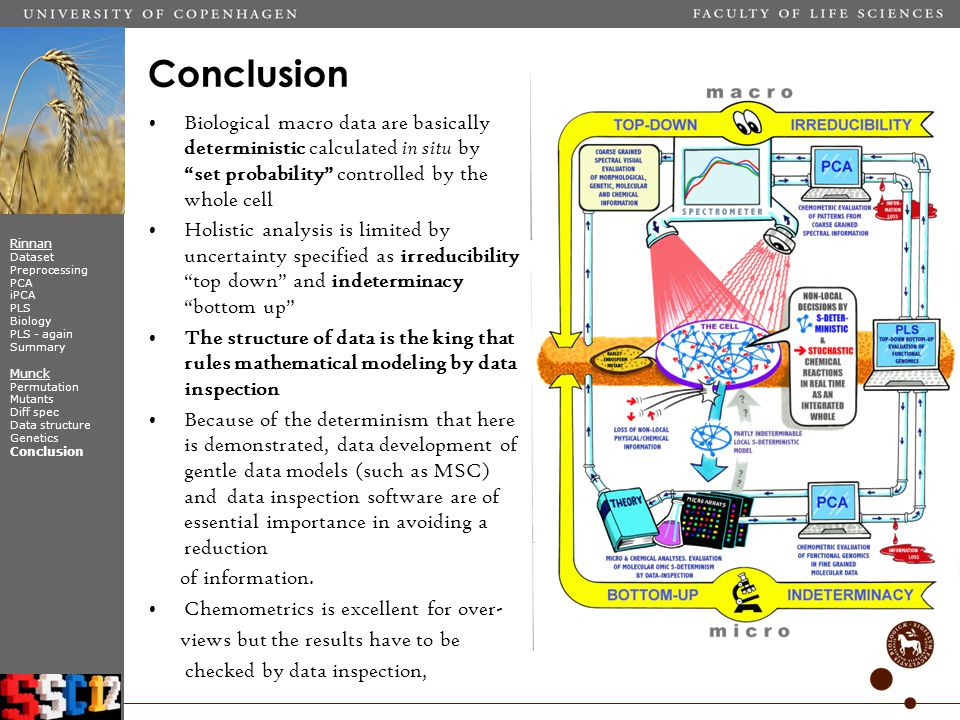 Biological macro data are basically deterministic calculated in situ by set probability controlled by the whole cell Holistic analysis is limited by uncertainty specified as irreducibility top down and indeterminacy bottom up The structure of data is the king that rules mathematical modeling by data inspection Because of the determinism that here is demonstrated, data development of gentle data models (such as MSC) and data inspection software are of essential importance in avoiding a reduction of information.