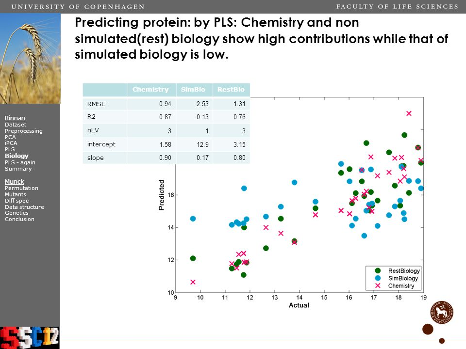 Predicting protein: by PLS: Chemistry and non simulated(rest) biology show high contributions while that of simulated biology is low.