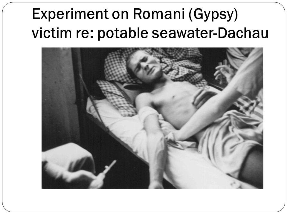 Experiment on Romani (Gypsy) victim re: potable seawater-Dachau