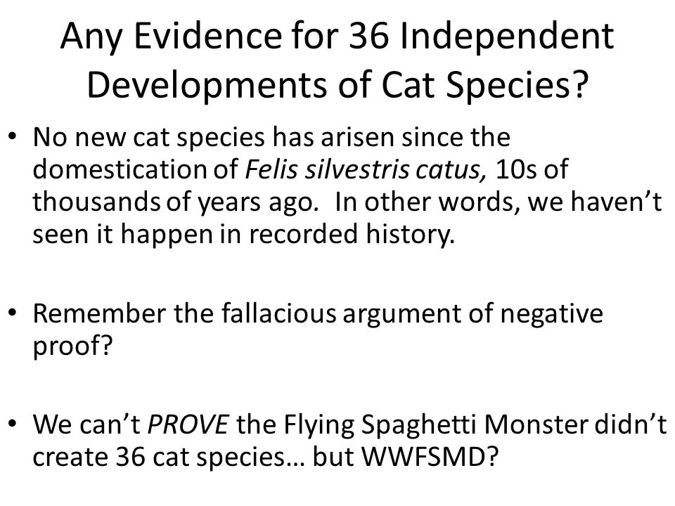 Any Evidence for 36 Independent Developments of Cat Species.