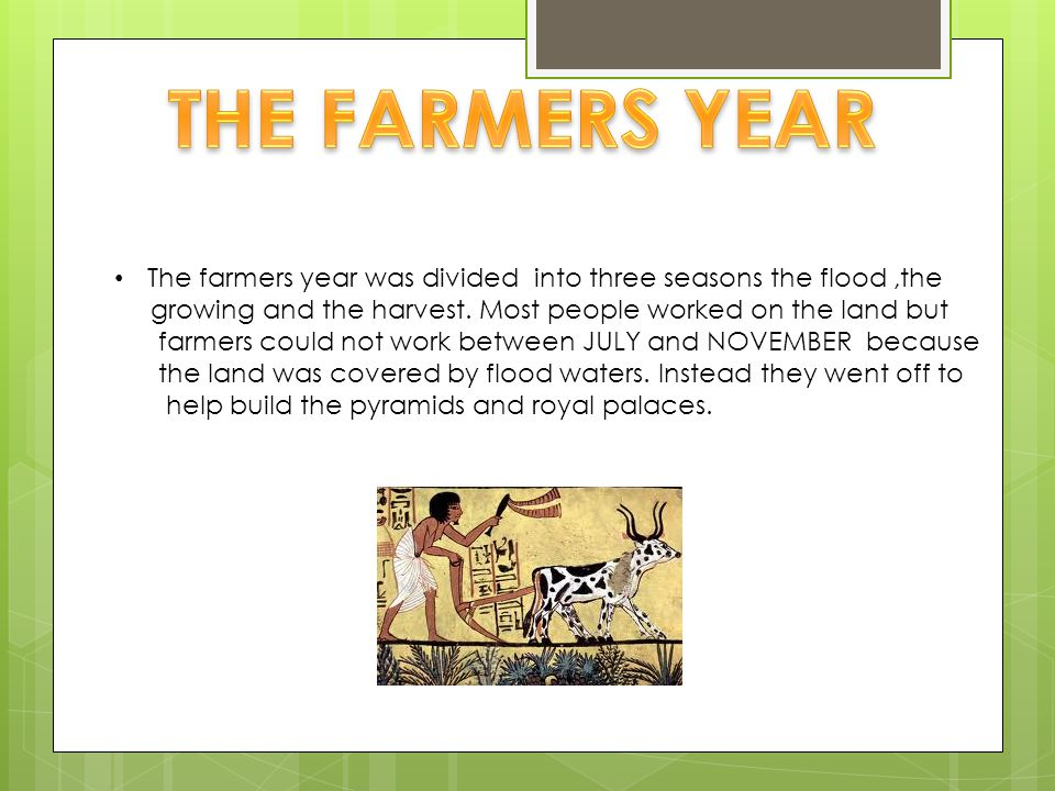 The farmers year was divided into three seasons the flood,the growing and the harvest.