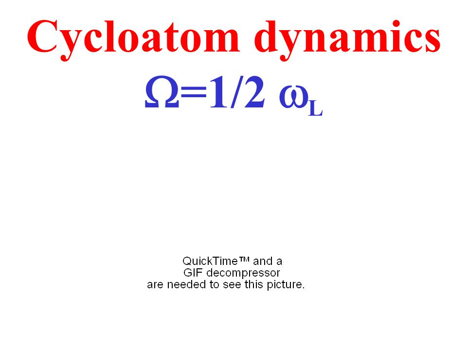 Cycloatom dynamics  =1/2  L